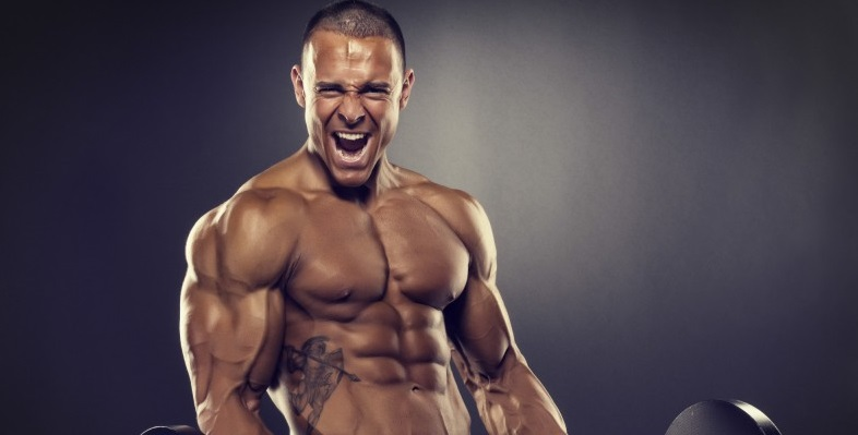How testosterone helps build muscle