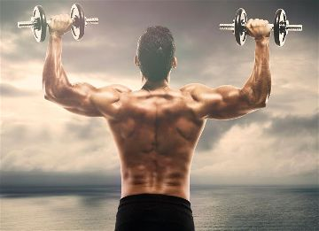 List of back workouts