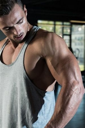 Anabolic steroids speed up muscle protein synthesis