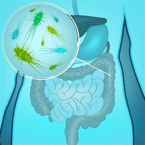 Probiotics can heal leaky gut